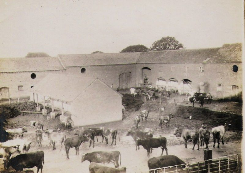 Farming at Soulton in 1890