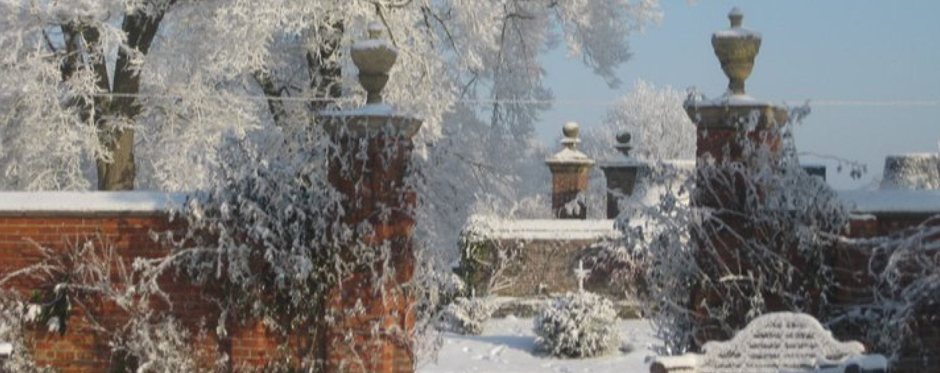 Gardens in the Snow Soulton