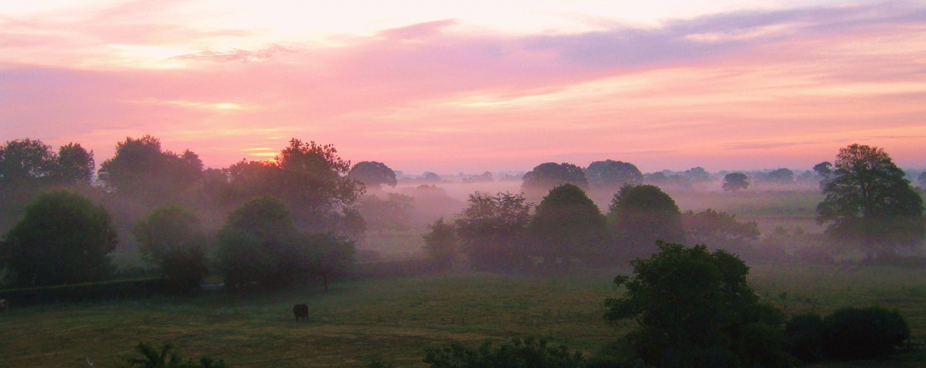 Mist over Soulton Hall