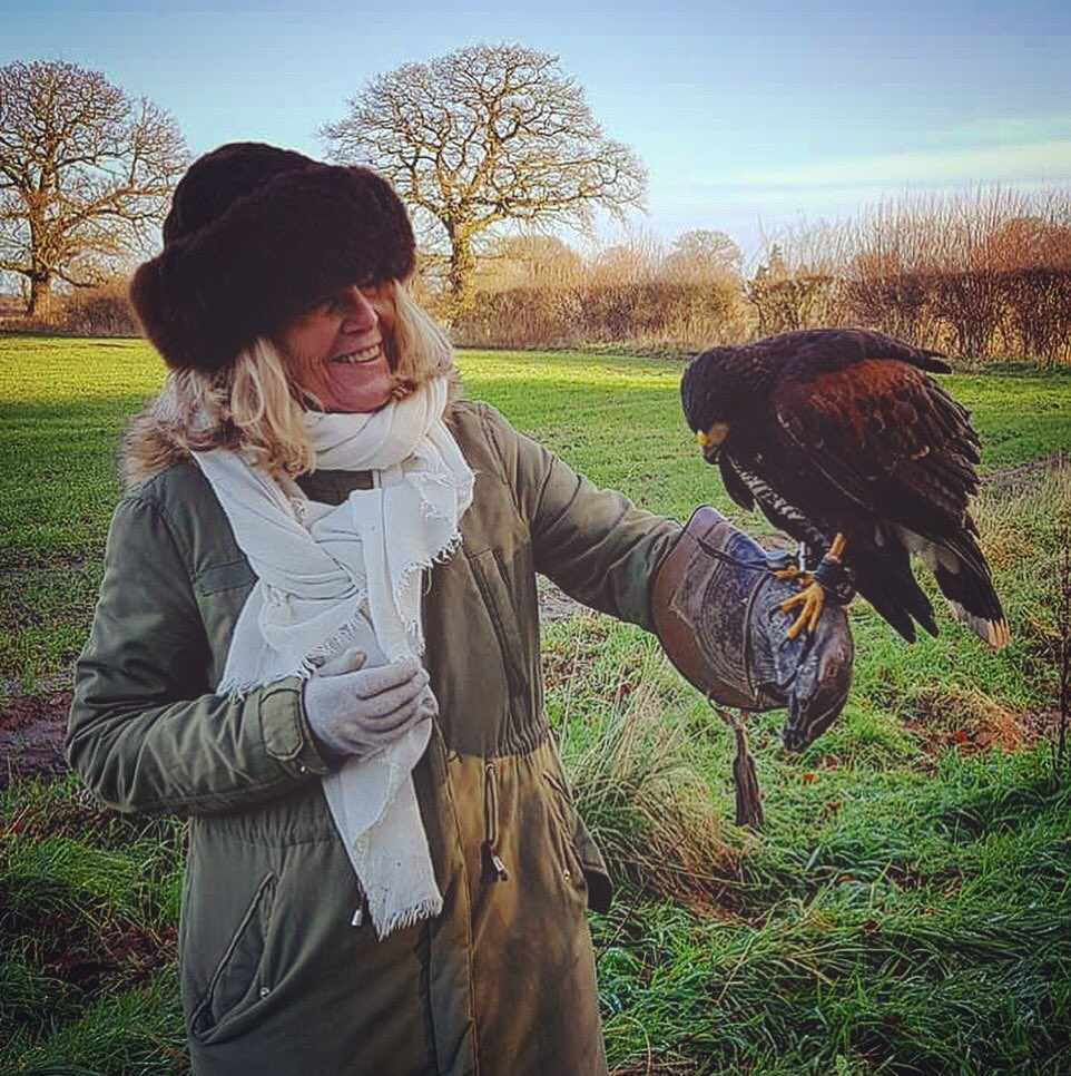 Falconry at Soulton